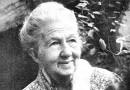 Poetisa, ensaísta, jornalista, doceira, Cora Coralina foi uma destemida e lutou contra preconceitos de sua época para tornar públicas as suas ideias